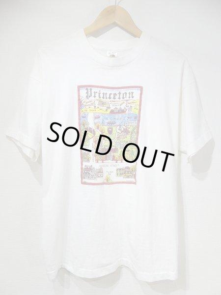 画像1: USA製 90s Princeton スーベニア 風景 絵画 プリント Tシャツ (1)